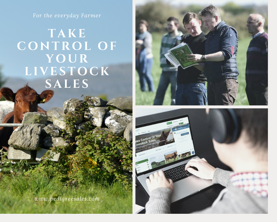 Take Control Of Your Livestock Sales