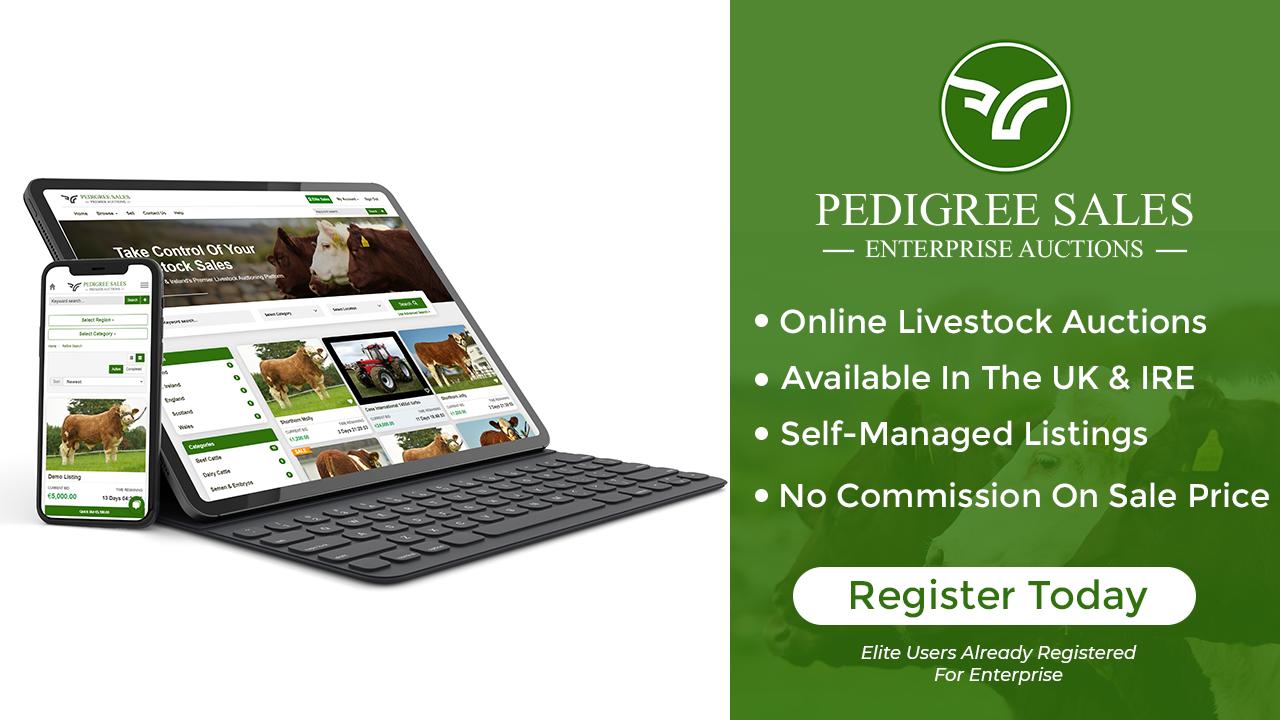 Pedigree Sales Enterprise